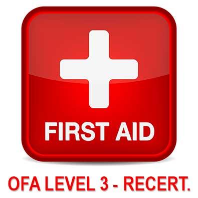 First Aid Level 3 recert