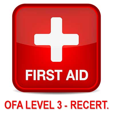 First Aid Level 3 recert